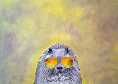 Il castorino - PIUBELEVA