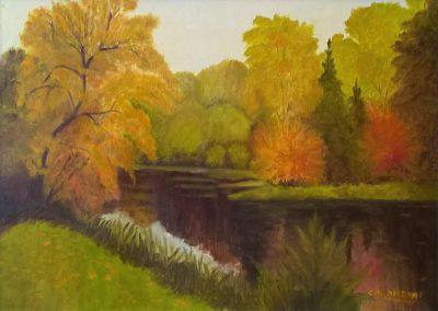 Colori sul fiume - COLOMBINIGILBERTO