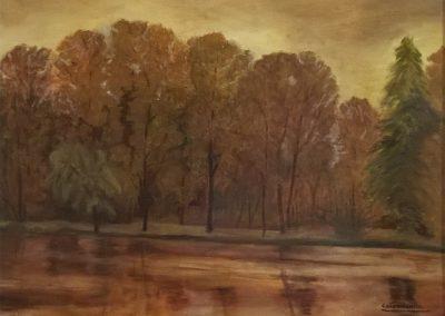 Pioppeto in riva al fiume - COLOMBINIGILBERTO