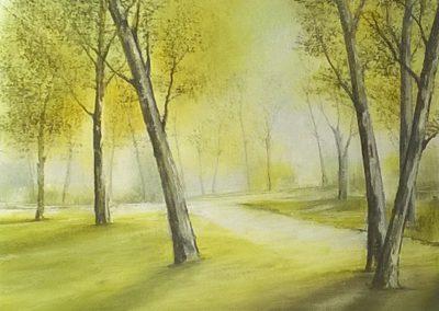 Luci e colori d'autunno - VOLTAGIORGIO